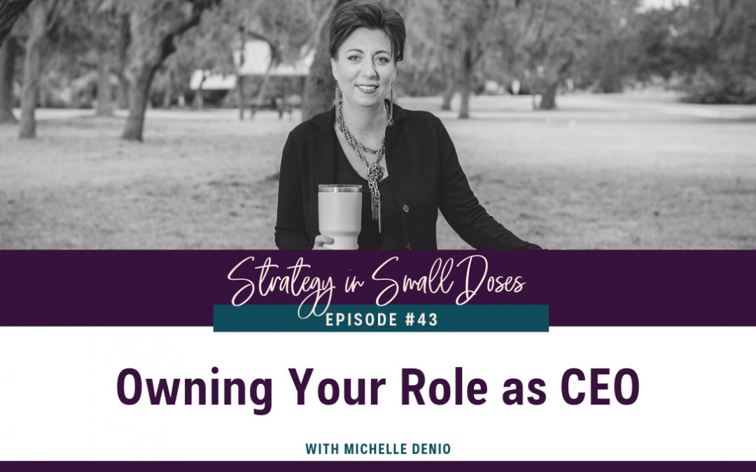 Owning Your Role as CEO